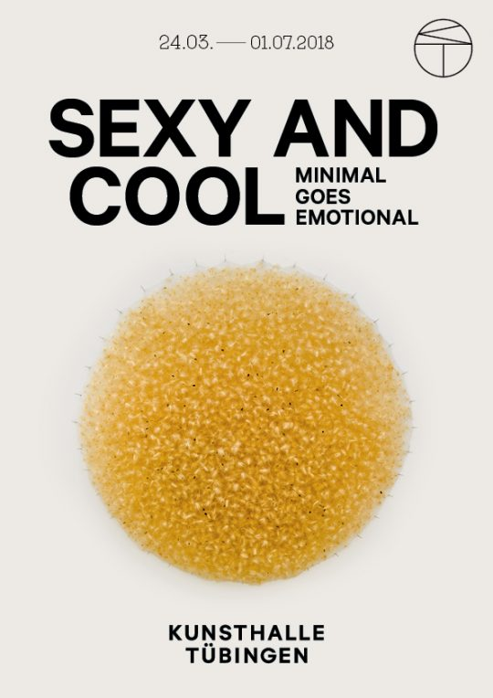 KT_WEB Sexy and Cool - Poster