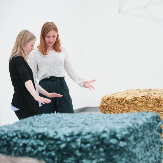 Kunstvermittlerin sprich in der Kunsthalle Tübingen über Lara Favarettos Arbeit. Foto: Wynrich Zlomke