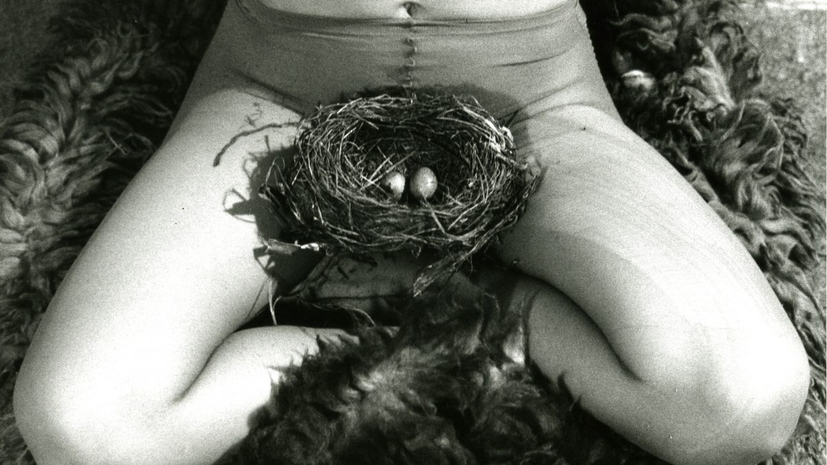 Birgit Jürgenssen Nest (Detail), 1979 S/W Fotografie 16,3 x 24 cm Estate Birgit Jürgenssen Estate Birgit Jürgenssen. Courtesy Galerie Hubert Winter, Wien Bildrecht Wien, 2018