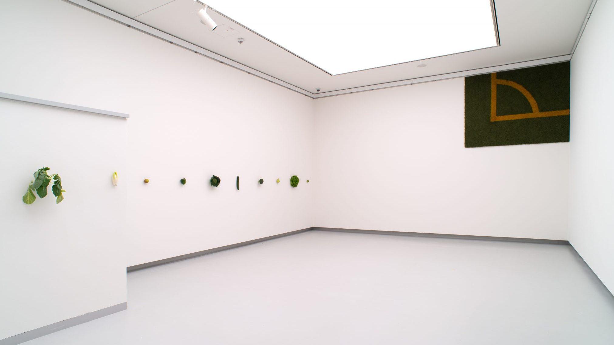 Installationsansichten der Ausstellung KARIN SANDER in der Kunsthalle Tübingen. Foto: Martin Lauffer Für die Werke von Karin Sander gilt: © Studio Karin Sander, VG Bild-Kunst, Bonn 2021